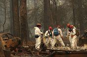 Kebakaran Hutan di California: 77 Orang Tewas, 993 Lainnya Masih Hilang