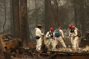 Korban Hilang akibat Kebakaran Hutan California Capai 600 Orang