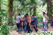 Warga Diterkam Buaya BKSDA Kirim Tim ke Aceh Timur