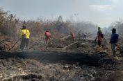 Ribuan Hektar Lahan Gambut Terbakar, Kabut Asap Dikhawatirkan ke Malaysia