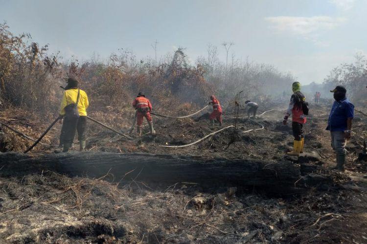 Petugas gabungan melakukan pemadaman api karhutla di Kelurahan Terkul, Kecamatan Rupat, Kabupaten Bengkalis, Riau, Rabu (20/2/2019).