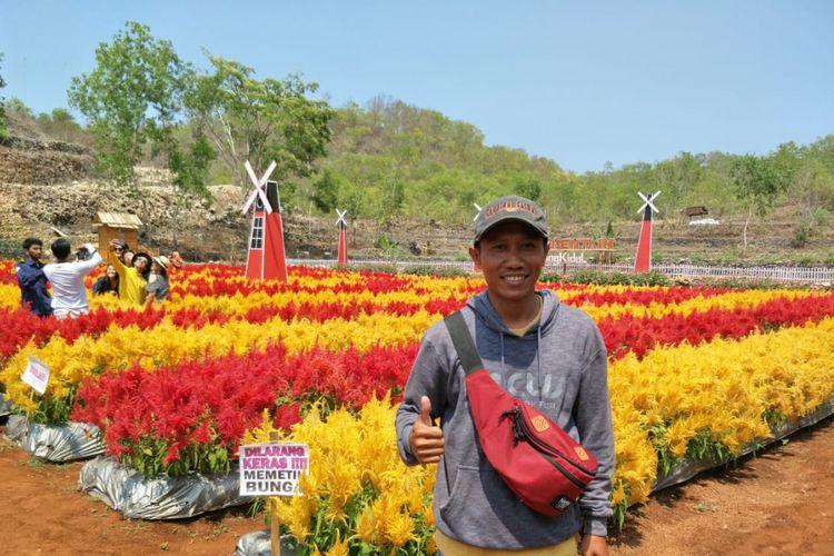 Pemilik taman bunga celosia, Bariyanto.