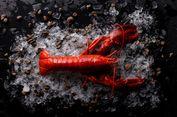 Di Swiss, Dilarang Merebus Lobster dalam Keadaan Sadar