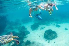 Virgin Island, Harta Karun Thailand
