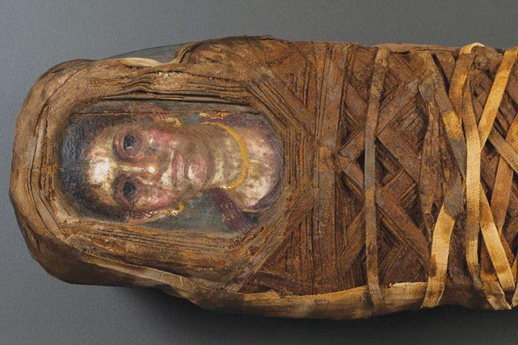 Lukisan pada peti mumi