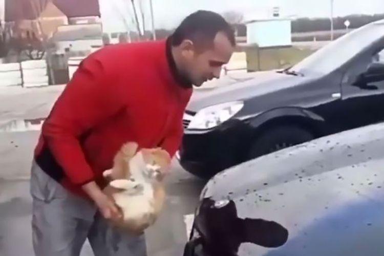 Dalam video yang beredar di Rusia, terlihat pria yang tengah membersihkan mobilnya dengan seekor kucing.