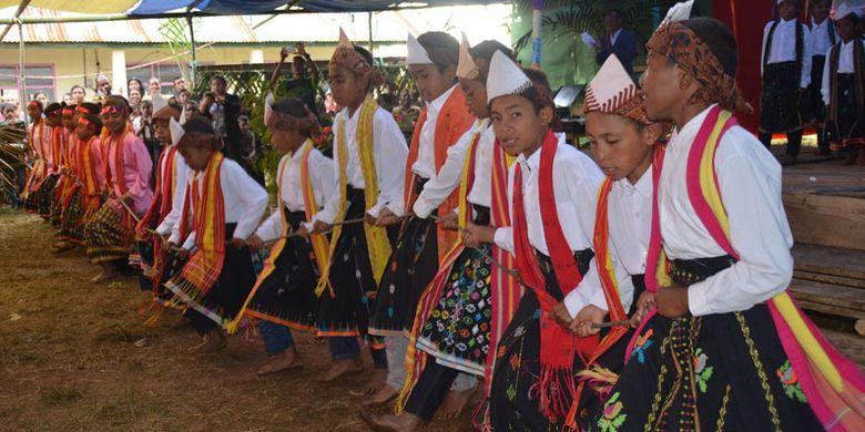Para penari mulai menarik tali sambil bernyanyi dalam tradisi Umbiro pada perayaan pesta ke-54 tahun Sekolah Dasar Katolik Waekekik, Desa Ranakolong, Kota Komba, Manggarai Timur, Flores, NTT, Selasa (1/8/2017).
