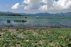 Tercemar, Air Danau Batur Bali Tidak Layak Dikonsumsi Langsung