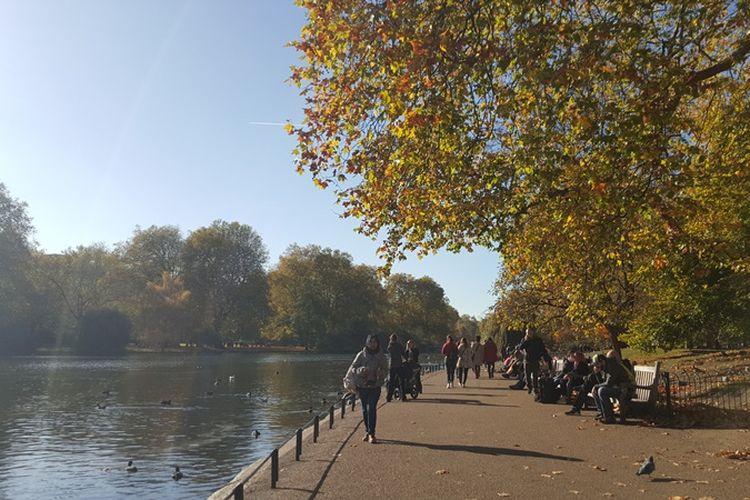 St James Park adalah taman seluas 23 hektar yang berada di sisi kiri Istana Buckingham. Taman ini juga meliputi danau yang membentang dengan angsa, pelikan dan berbagai burung lainnya yang beterbangan dan bermain di atasnya. Pengunjung juga bisa melihat tupai berlarian dan memanjat pohon. Banyak hal yang bisa dilakukan mulai duduk-duduk di bangku taman, makan siang, hingga piknik di atas rumput.