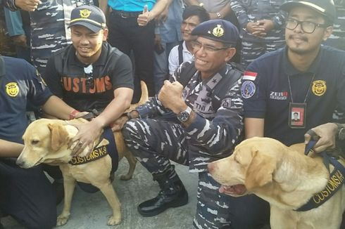 Kisah Anjing K-9 Sempat Mabuk Saat Bertugas di Kapal Berisi 1 Ton Sabu