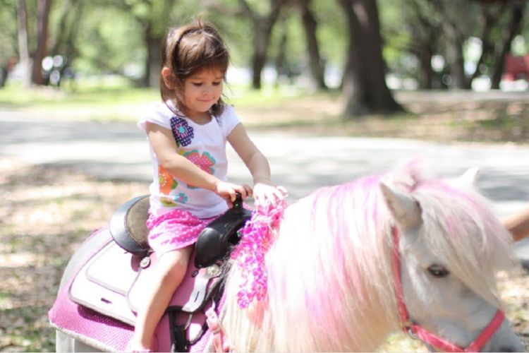 Seorang anak kecil sedang menunggang kuda poni di Pipo Pony Club, Pattaya, Thailand.