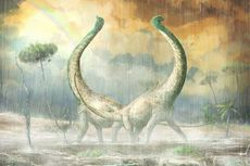 Tulang Ekor Spesies Baru Dinosaurus Ini Berbentuk Jantung Hati