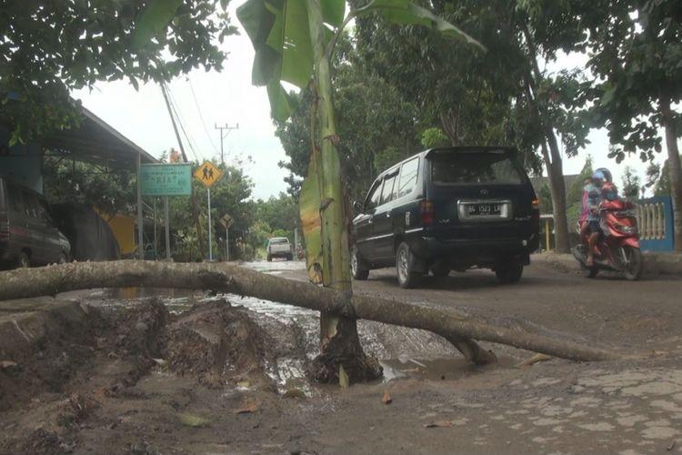 Sebagai bentuk protes jalan rusak dan tidak kunjung diperbaiki, warga Perumahan Guru Kutaraya Kayuagung Ogan Komering Ilir Sumatera Selatan menanam pohon pisang di tengan jalan.