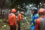 Hujan Es dan Angin Kencang Landa Magelang, Sejumlah Pohon Tumbang