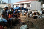 Petugas Kerap Temukan Potongan Hewan yang Cemarkan Sungai di Jakarta