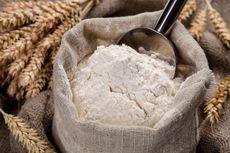 Kenali Kegunaan Tepung Maizena dalam Kehidupan Sehari-Hari