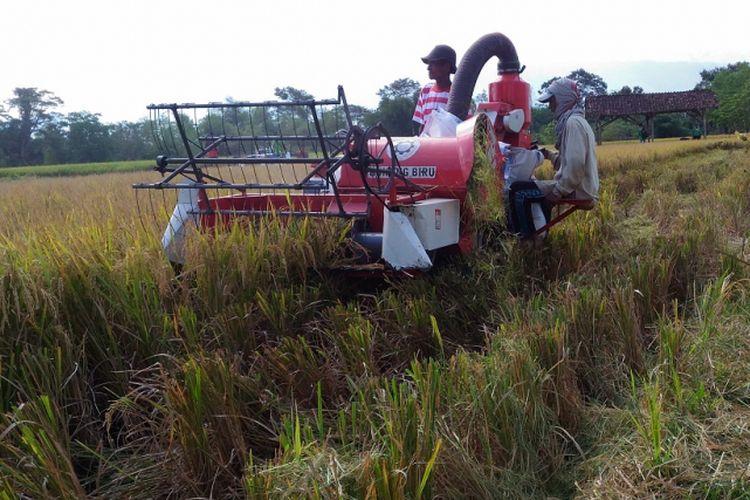 Petani di Kabupaten Bondowoso memanen padi dengan menggunakan alat mesin pertanian bantuan dari Kementerian Pertanian, Selasa (22/5/2018)