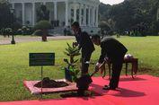 Jokowi dan Guterres Tanam Pohon Per   damaian