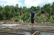 'Illegal Logging' di Sungai Musi, Polda Sumsel Temukan 1.848 Kubik Kayu Tak Bertuan