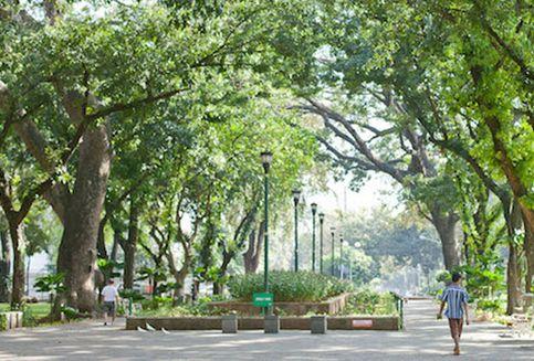 5 Taman Kota untuk Melawan Sumpek dan Kemacetan Ibu Kota