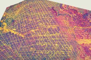 Grafiti Pemburu Paus Kuno Ditemukan di Australia Barat