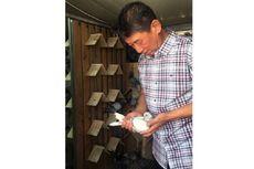 Mengintip Balapan Burung Dara di China, Olahraga Bernilai Miliaran Rupiah
