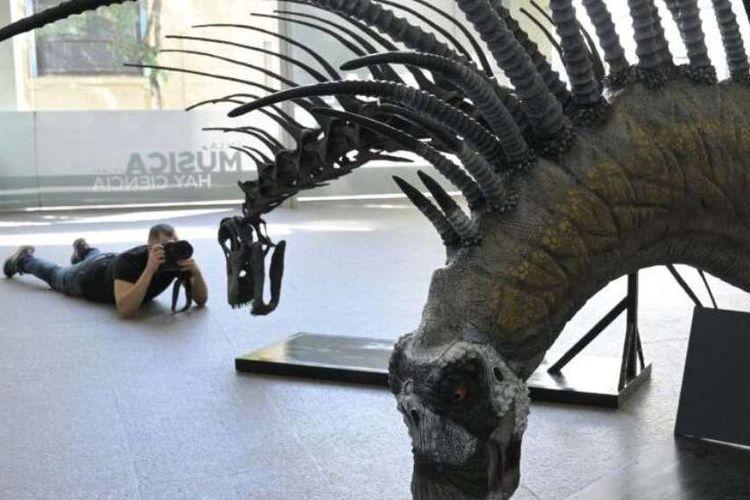 Bajadasaurus pronuspinax memiliki leher dan punggung bertanduk tajak yang diyakini mekanisme pertahanan melawan predator.