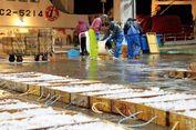 """Ingin Lihat Ikan-ikan """"Langka"""" di Jepang? Kunjungi Tempat Ini"""