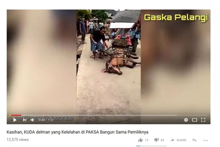 Video penyiksaan terhadap seekor kuda yang dijadikan delman viral di media sosial.