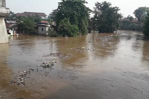 Ciliwung Meluap, Banjir Rendam 17 Titik di Jakarta Ini