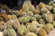 5.000 Durian Akan Dibagikan Gratis di Lebak, dari yang Beratnya 12 Kg hingga Disebut Paling Enak