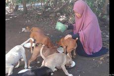 Kisah Desy Wanita Berhijab Penolong Anjing Liar,