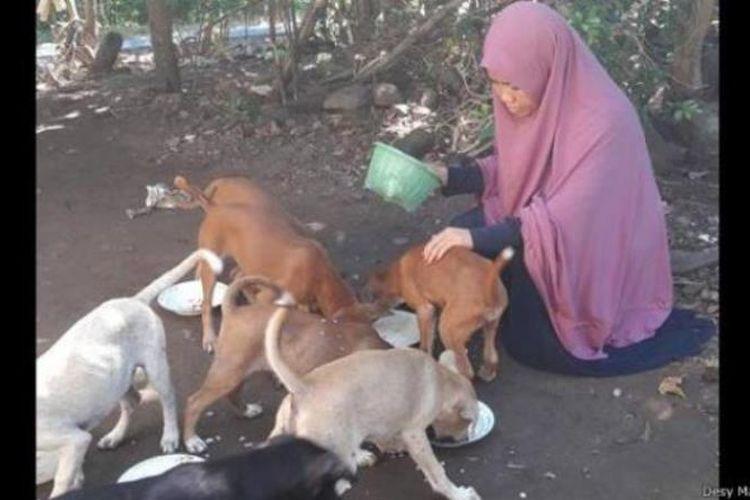 Desy Marlina Amin, perempuan berhijab penolong hewan liar di jalanan, termasuk anjing, di Lombok Tengah, NTB. Aksinya menuai kontroversi.