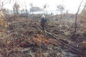 Penjelasan KLHK soal Kebakaran Hutan dalam Tiga Tahun Terakhir