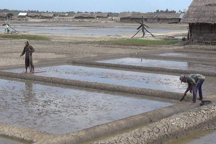 Para petani garam di Kabupaten Jeneponto, Sulawesi Selatan tengah menggarap hamparan tambak garam ditengah melejitnya harga garam. Rabu, (26/7/2017).
