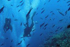 Penyelam Hong Kong Tewas Terkena Baling-baling Kapal di Filipina