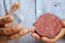 Dengan Bacon, Inggris Masuki Perlombaan Daging Laboratorium