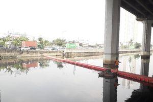 'Parah, Tiba-tiba Ikan di Kali Ancol Mati, Kemungkinan karena Limbah'