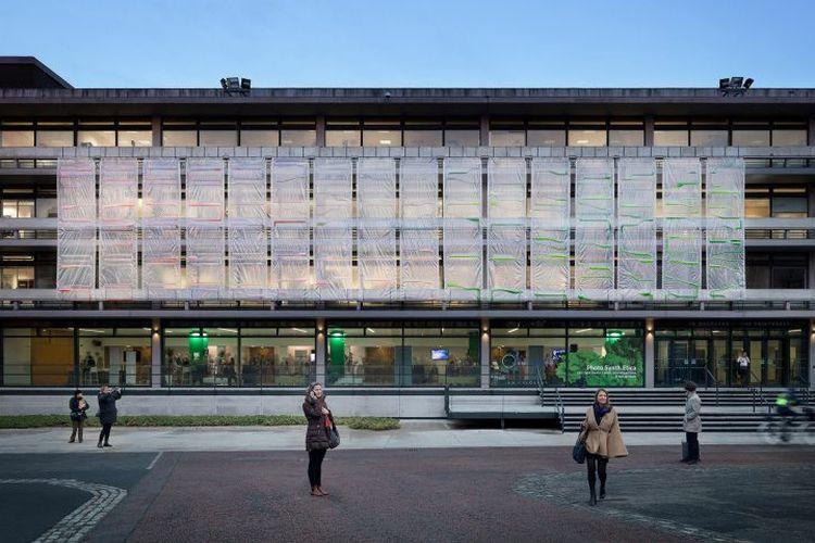 Penggunaan tirai mampu mengoptimalkan proses ini dibanding dengan menanam sejumlah pohon di lingkungan gedung