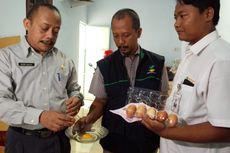 Kualitas Buruk, Telur Bantuan Pangan Nontunai Ditarik Penyuplai dari Agen