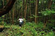 Mengintip Hutan Aokigahara di Jepang, Tempat Sempurna untuk Mati