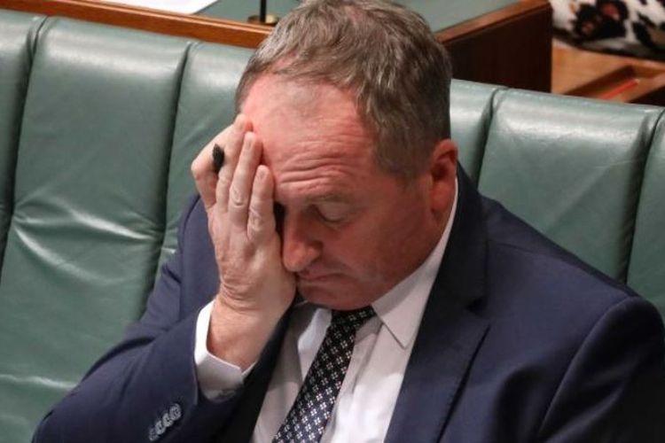 Barnaby Joyce (ABC News)