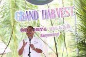 Harvest Resort and Village, Hotel Baru di Banyuwangi