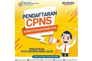 Pendaftaran CPNS Dibuka Besok, Perhatikan Dokumen dan Alur Pendaftaran Ini