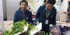 Jurus Jitu Bangkitkan Pertanian Indonesia