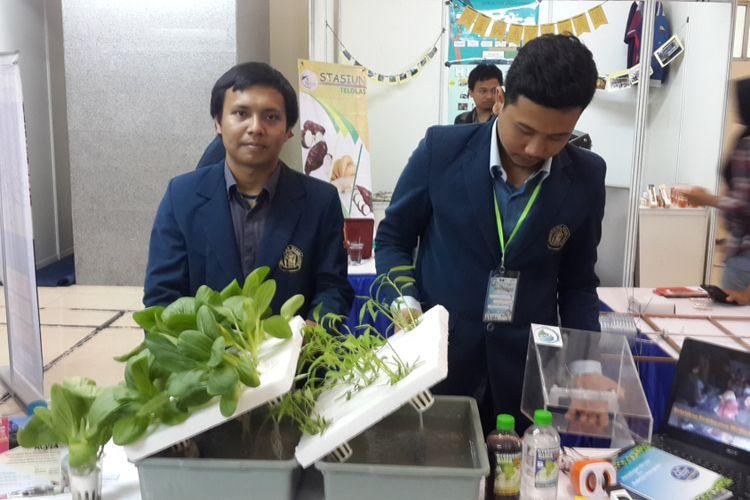 Sejumlah mahasiswa Fakultas Teknologi Pertanian Universitas Brawijaya, Malang saat menunjukkan teknologi budidaya hidroponik dengan air laut saat Pameran Inovasi Pertanian di Fakultas Teknologi Pertanian, Universitas Brawijaya, Rabu (17/5/2017)