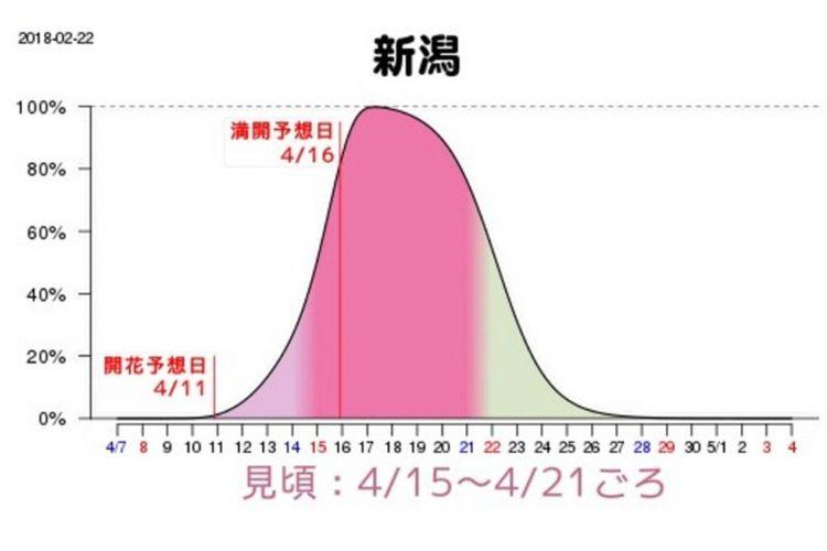 Grafik prakiraan waktu mekar sakura di Niigata