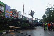 Pohon Tumbang di Bogor, Pengendara Sepeda Motor Luka Ringan
