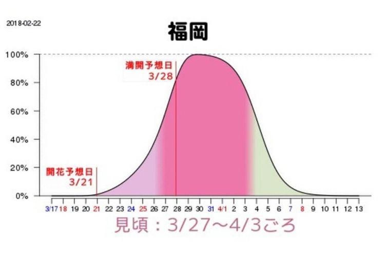 Grafik prakiraann waktu mekar sakura di Fukuoka