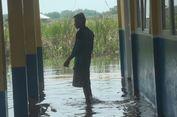 Ular Biasa Muncul hingga Ditemukan di Laci Meja Saat Sekolah Kebanjiran